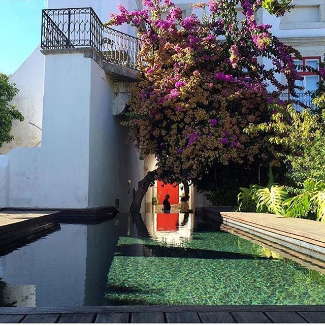 Enchanted @palaciobelmonte. Photo by @_itsbeautifulhere #portugal #architecture #arquitectura #design #interiordesign #style #styleinspiration #hotel #lisbon #garden #pool #magical #palace #history #saudadetoronto #littleportugal #thesix