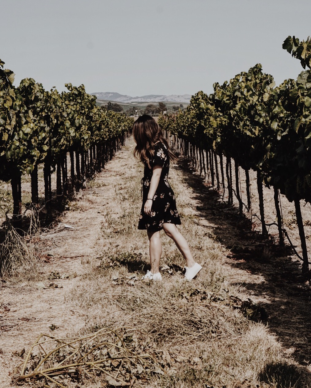 Abercrombie and Fitch Dress, Sonoma Wine Country Weekend