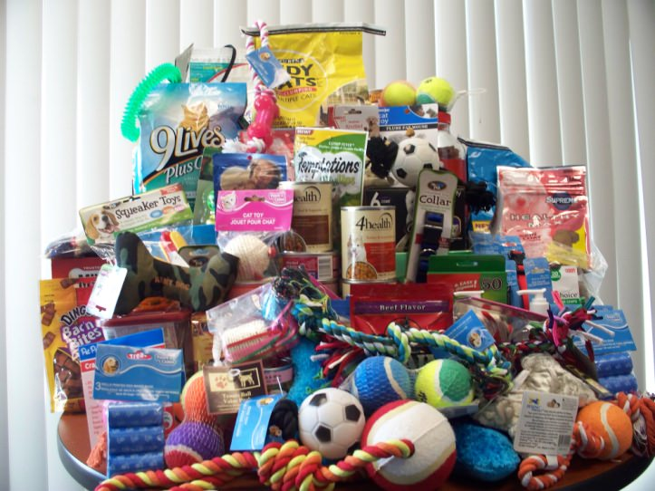 Host a supply drive to help the animals
