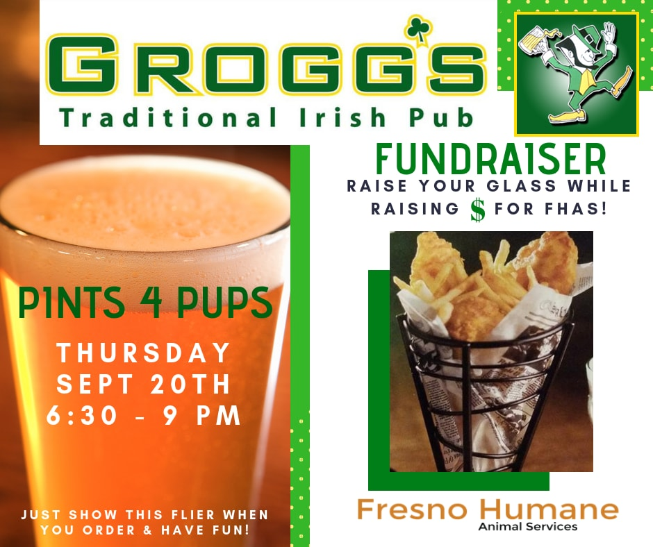 Come hang with great company at a yummy Irish pub Thursday, Sept 20th 6:30 to 9 PM! Grogg's is giving 15% of sales back to the animals. We are raising money to keep our spay and neuter momentum going!  #spayandneutersaveslives  #endpethomelessness   #givebackwhileyoueat  — feeling thankful at  Groggs Irish Pub .