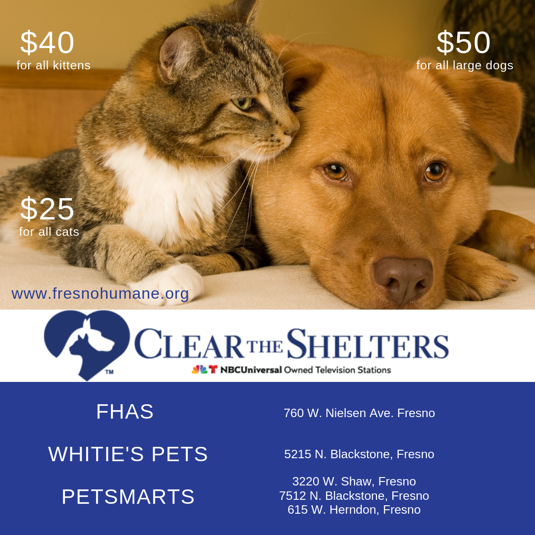 Clear the Shelters CATS & DOGS.png