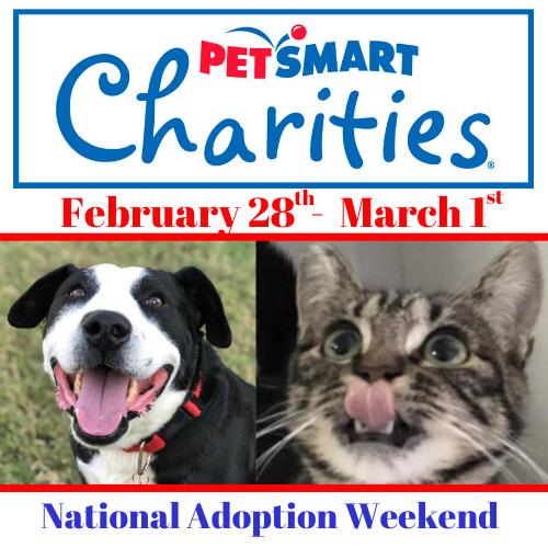 National Adoption Weekend At Petsmart River Park Fresno Humane Animal Services