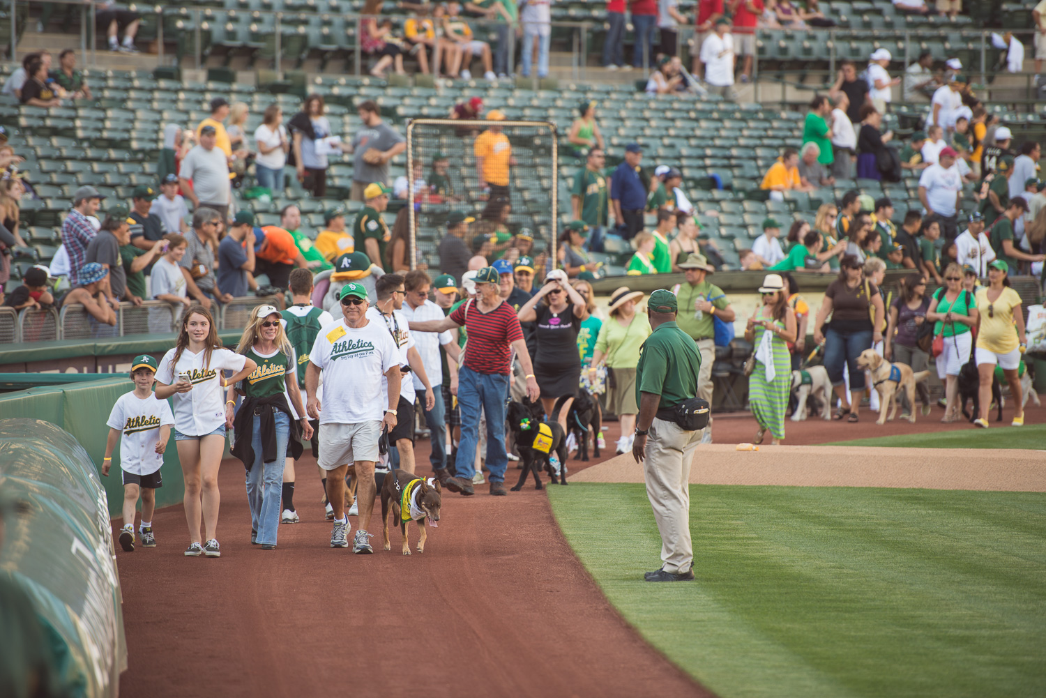 Dogs4Diabetes leads the parade // A's Dog Day at the Park // Ashley Petersen Photography
