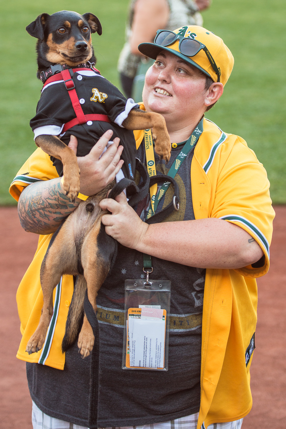 A's Dog Day at the Park // Ashley Petersen Photography