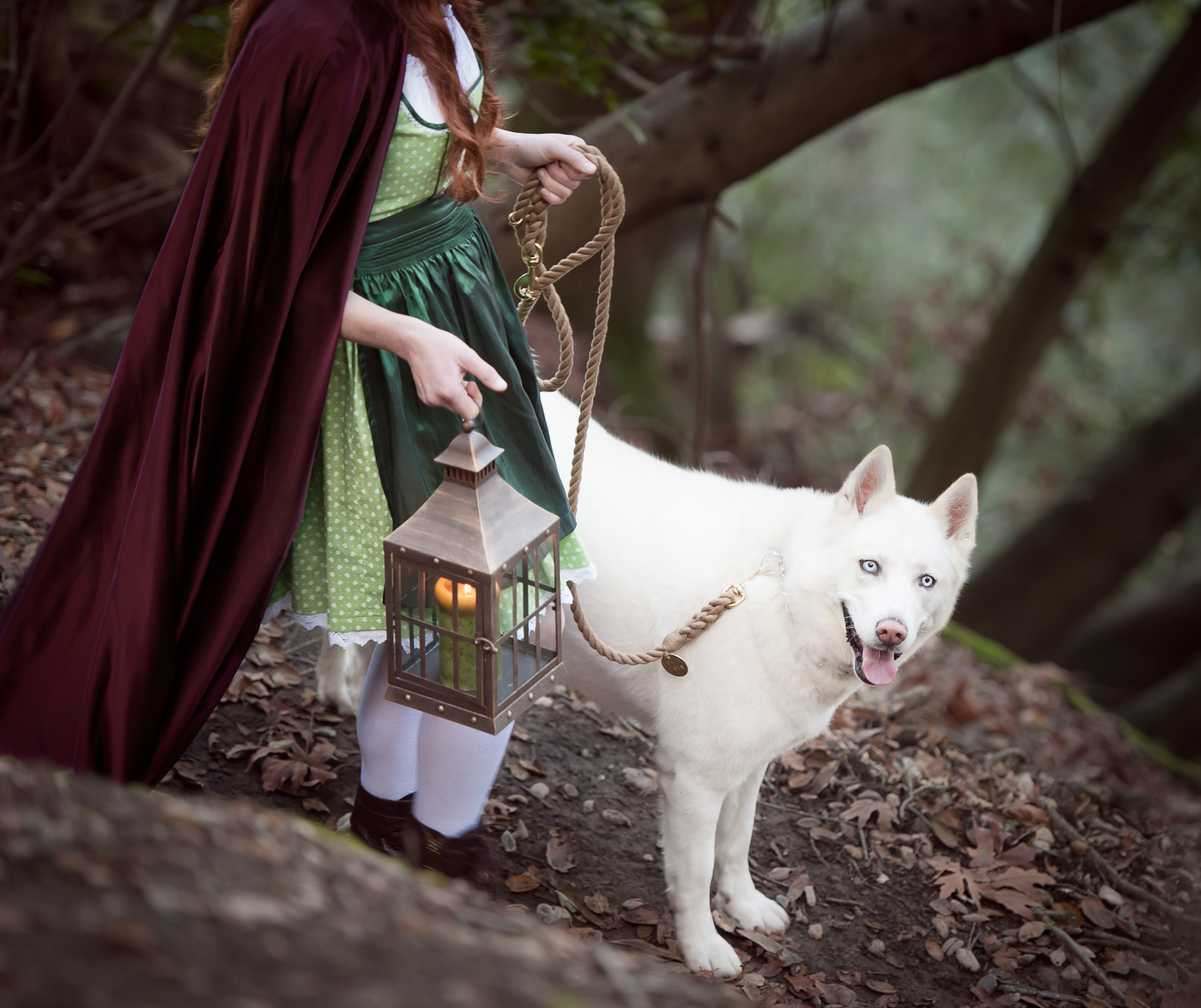 Red Riding Hoodand the white wolf // Conceptual Portraiture // Ashley Petersen Photo