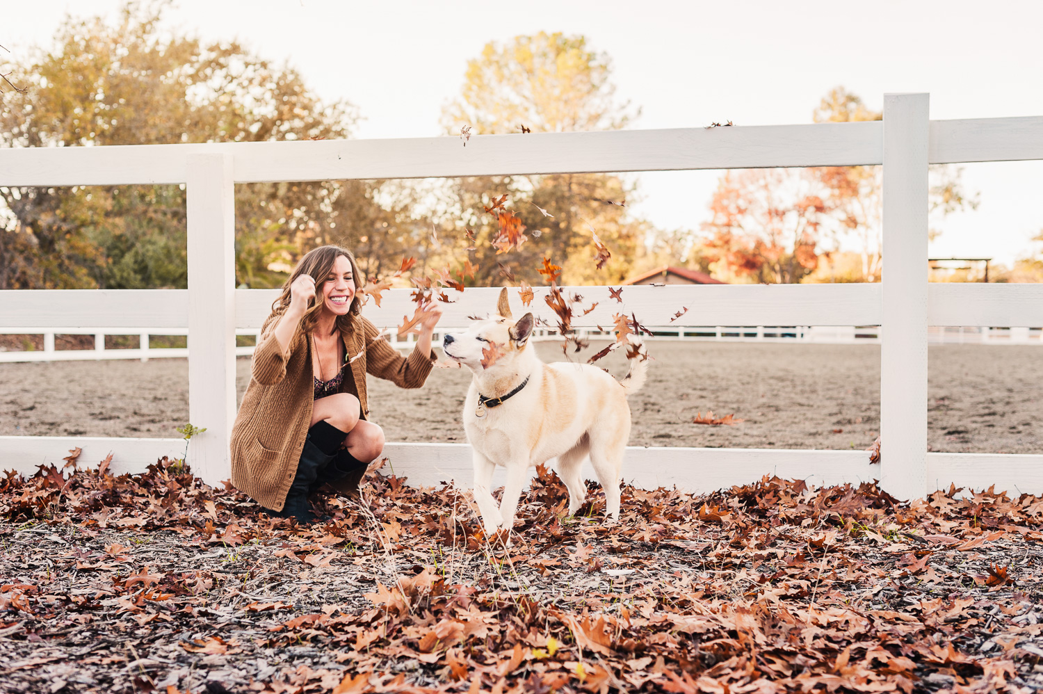 Fall Lifestyle // Ashley Petersen Photo