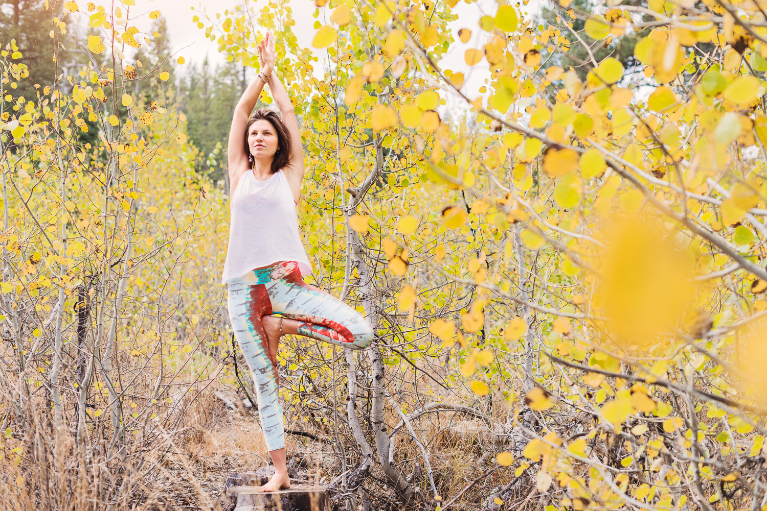 Yogi Ashley Dien in Truckee Fall Leaves // Tree Pose // Ashley Petersen Photo