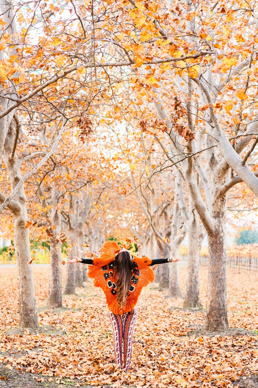 Yogi Amanda in the fall in Napa // Ashley Petersen Photo