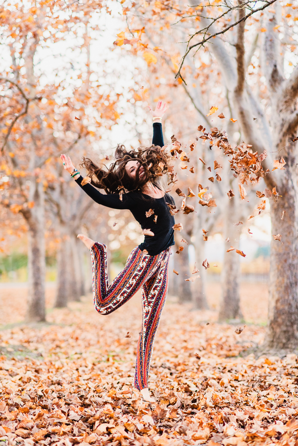 Napa in the Fall // Ashley Prtersen Photo