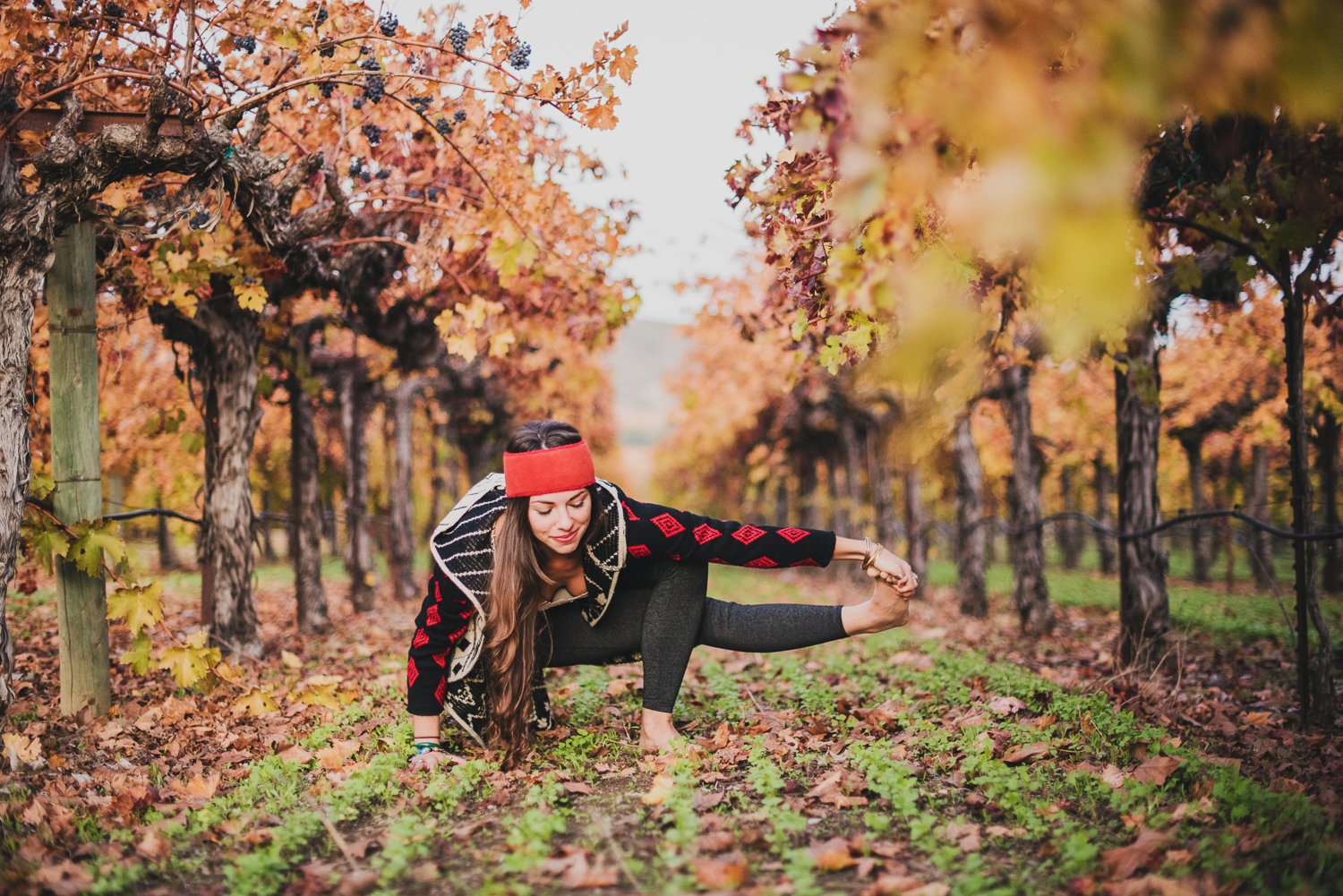 Yoga in Napa in the fall // Baby Grasshopper Pose // Ashley Petersen Photo