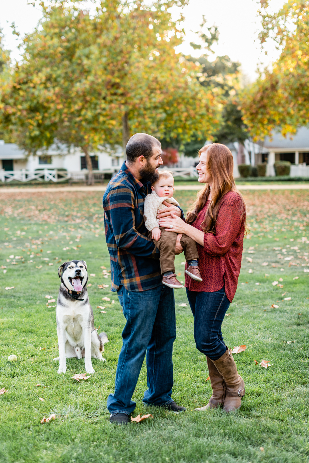 A family portrait including their dog at their family lifestyle photo session at Hap Magee Park in Danville, CA
