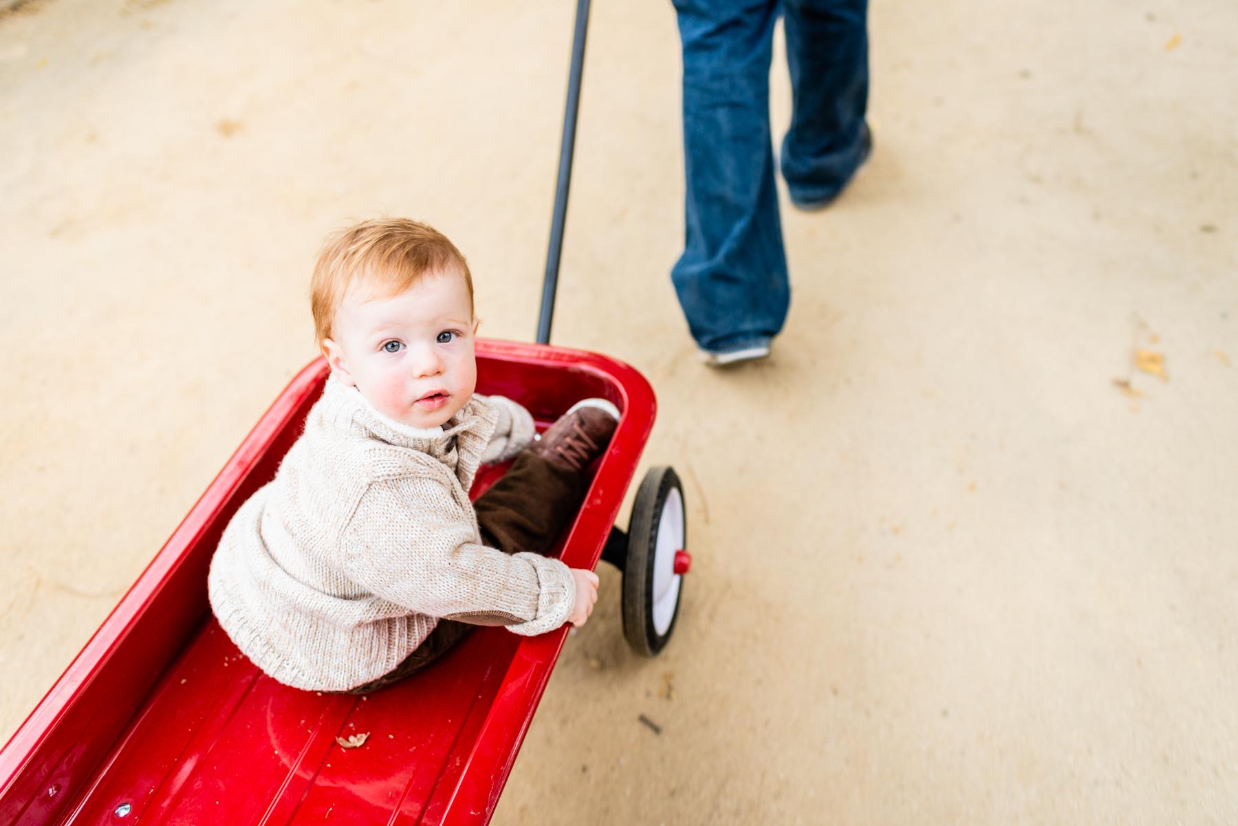 Toddler portrait at Hap Magee Park in Danville, CA.