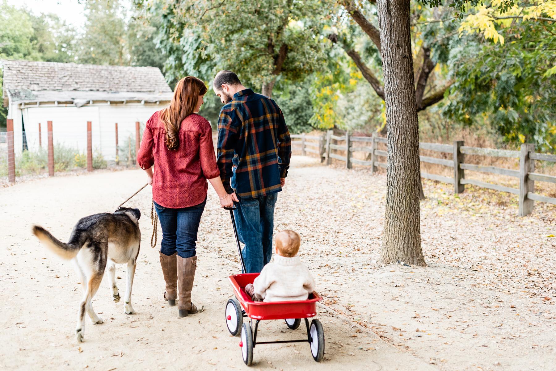 Family lifestyle portrait in Danville, CA.