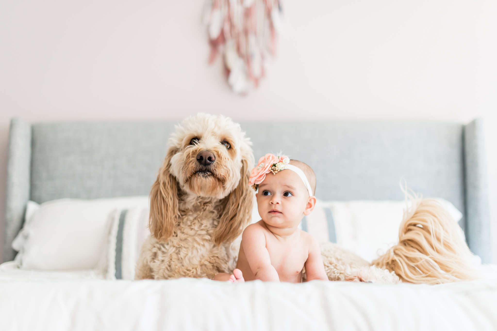 Baby girl and her puppy at the family lifestyle shoot