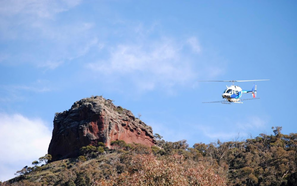 Helicopter Spraying, Tabletop NSW
