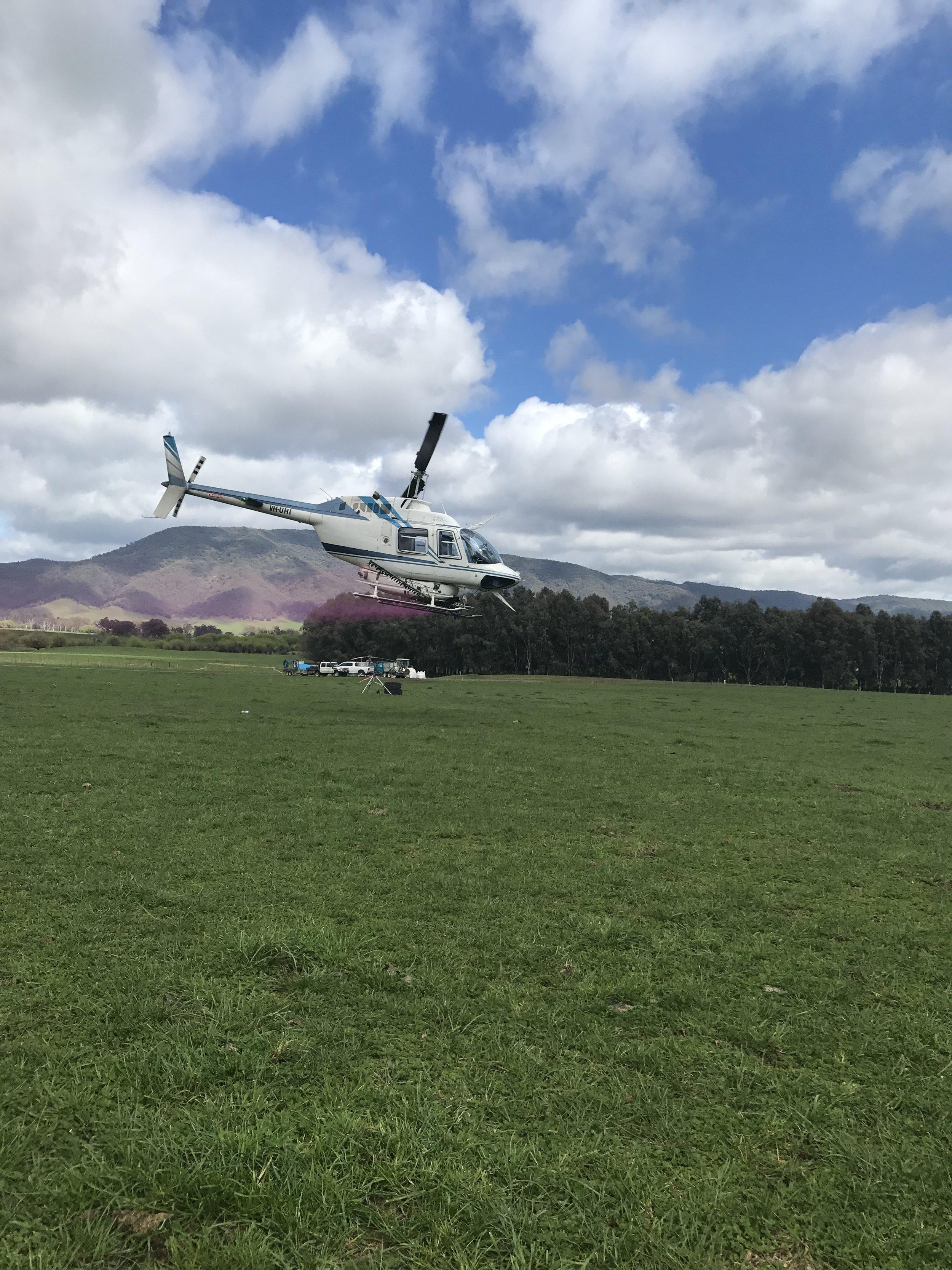 Pattern Testing Jetranger Helicopter