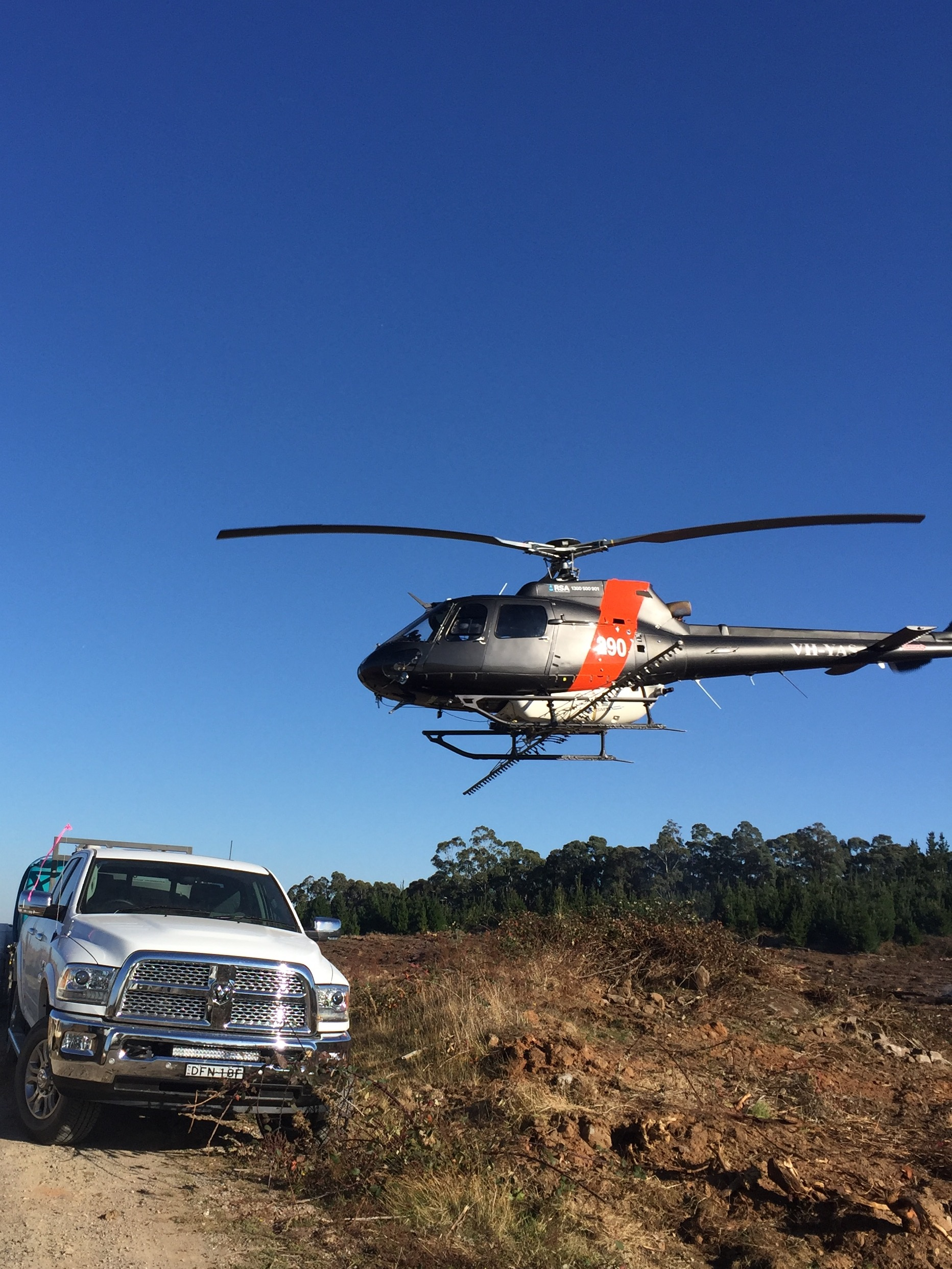 Helicopter Spraying, Forestry NSW