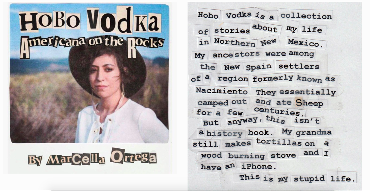 Hobo Vodka graphic 1.png