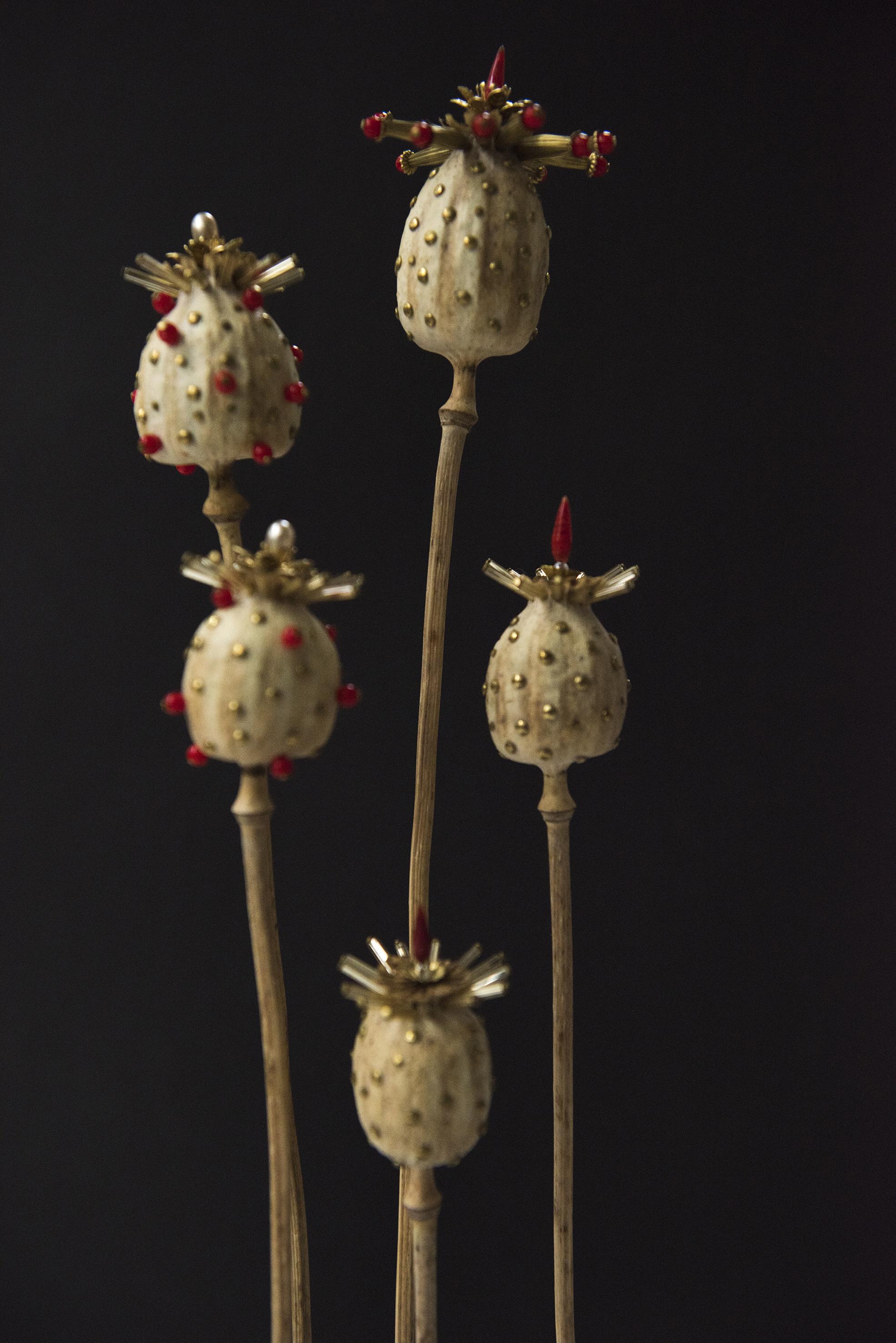 罌粟之王  26 x 57 厘米