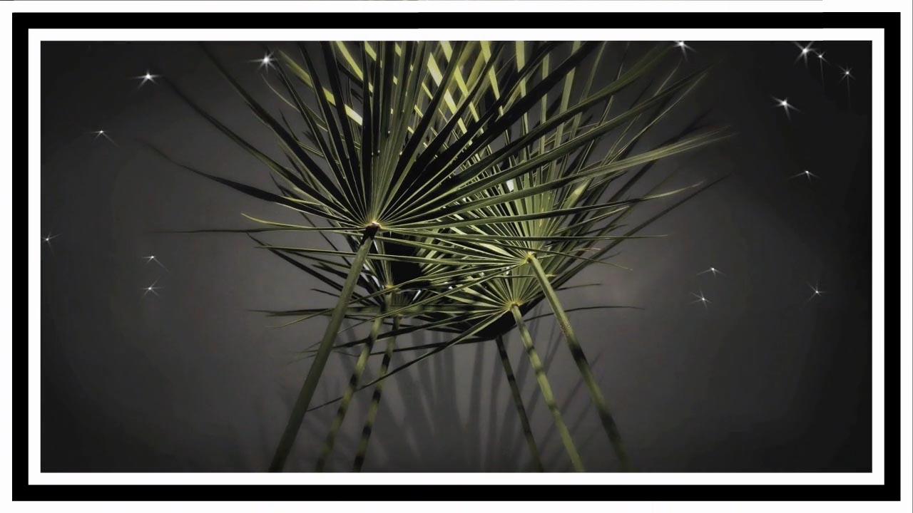 Les Beiges-HD4.jpg