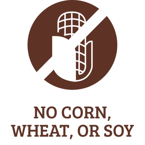 ics-NO-CORN_-WHEAT_-OR-SOY_large.png