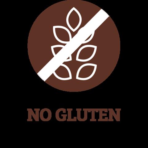 ics-NO-GLUTEN_large.png