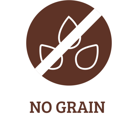 ics-NO-GRAIN_7642ab87-9f9e-4a78-914f-988e6e985e02_large.png