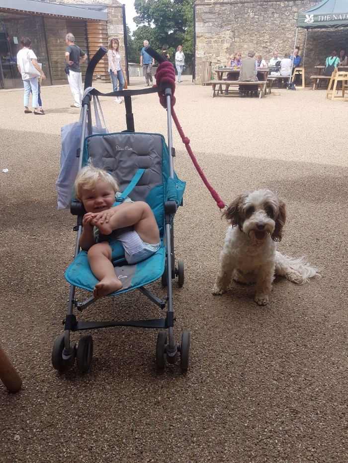 lucy messy mummy blog 2 post e - toddler and dog at National Trust property.jpg