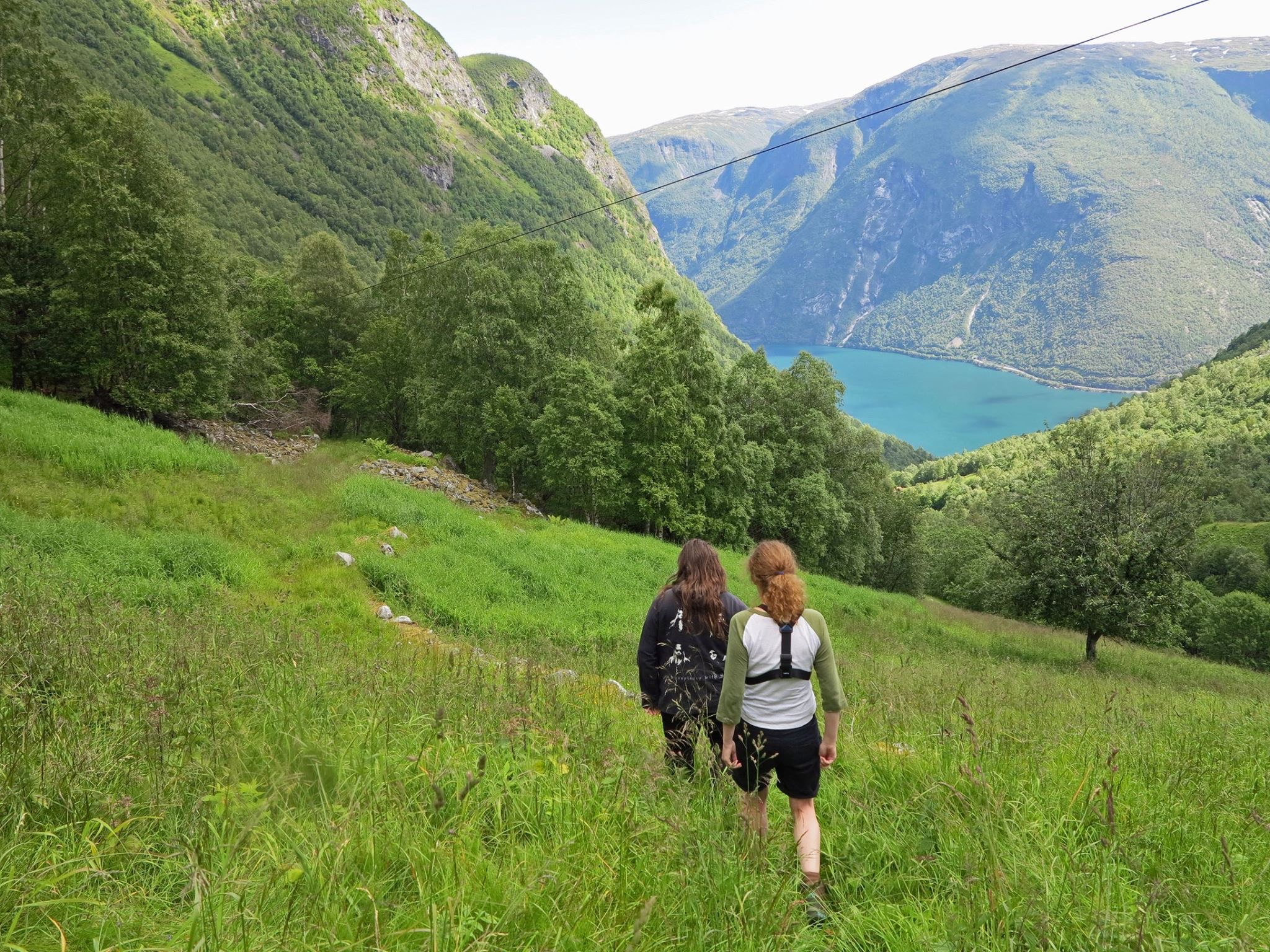 FROM FJORD TO MOUNTAIN