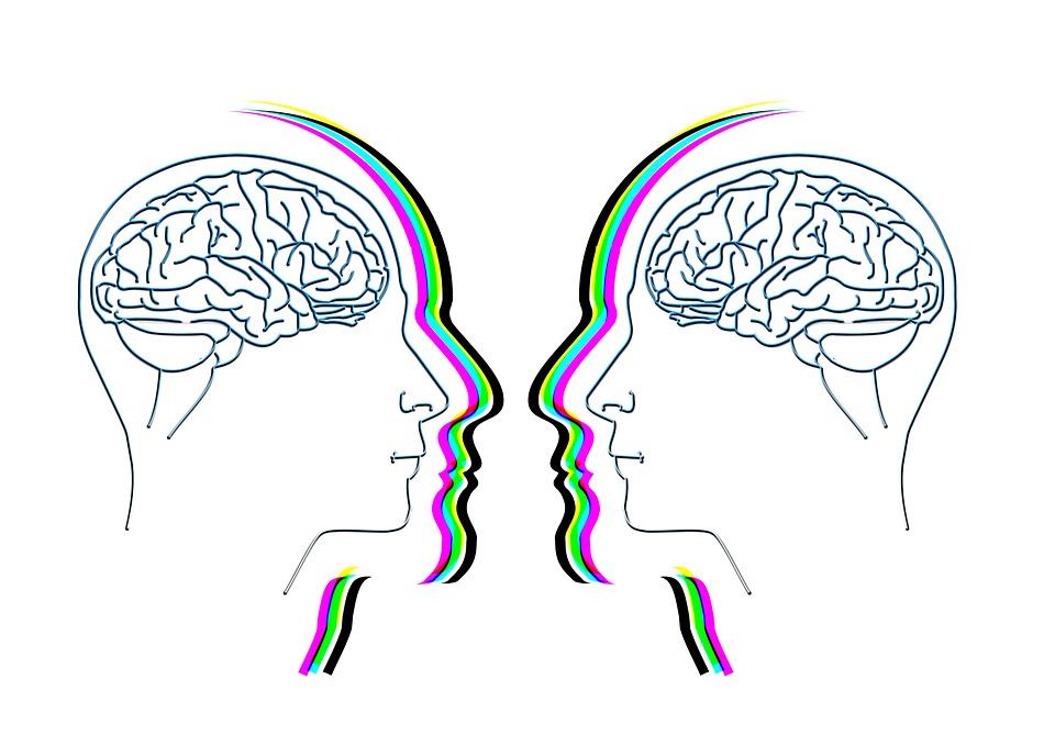 Aivot puhuvat toisilleen tarinoin.