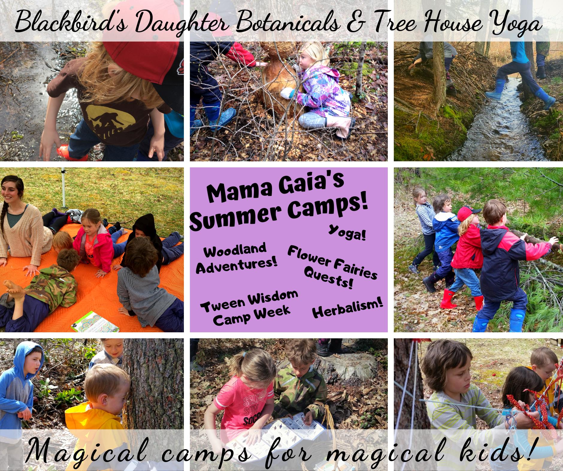 Mama Gaia's Nature Camps!.png