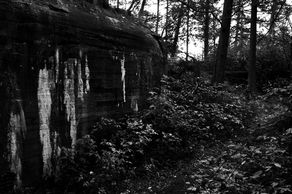 Bunker_in3_08.jpg