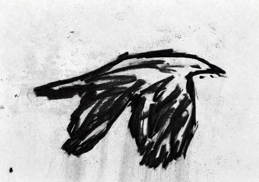 H_bird_b_no_nr2.jpg