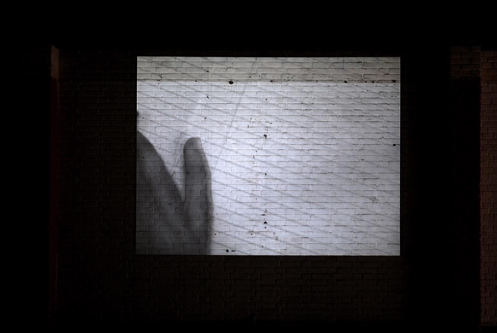 FreedomSG003.jpg