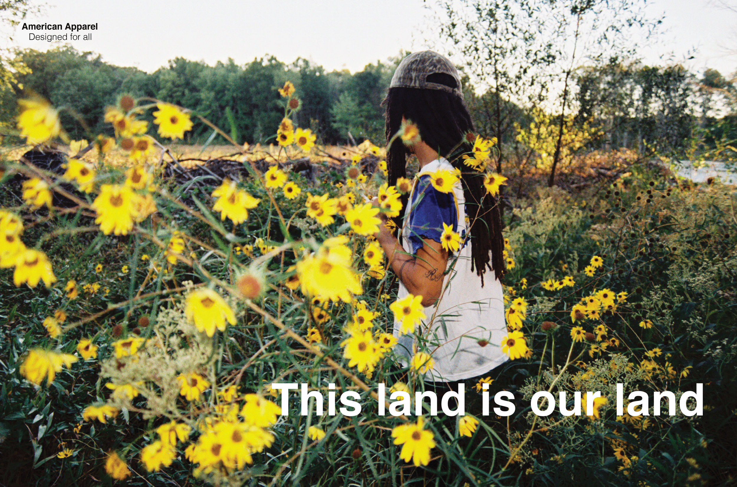 AA THIS LAND .jpg