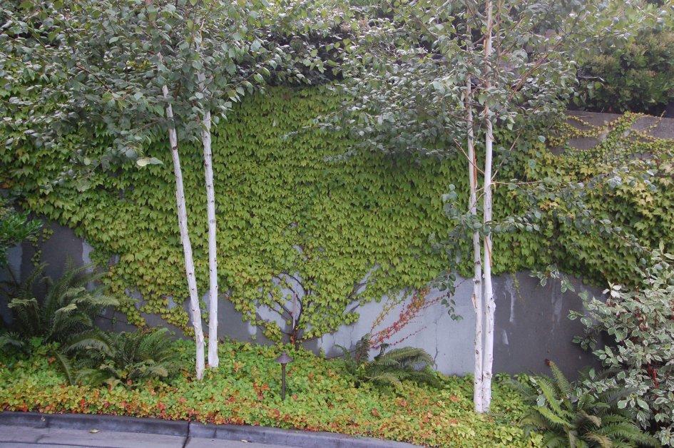 landscapes_09.jpg