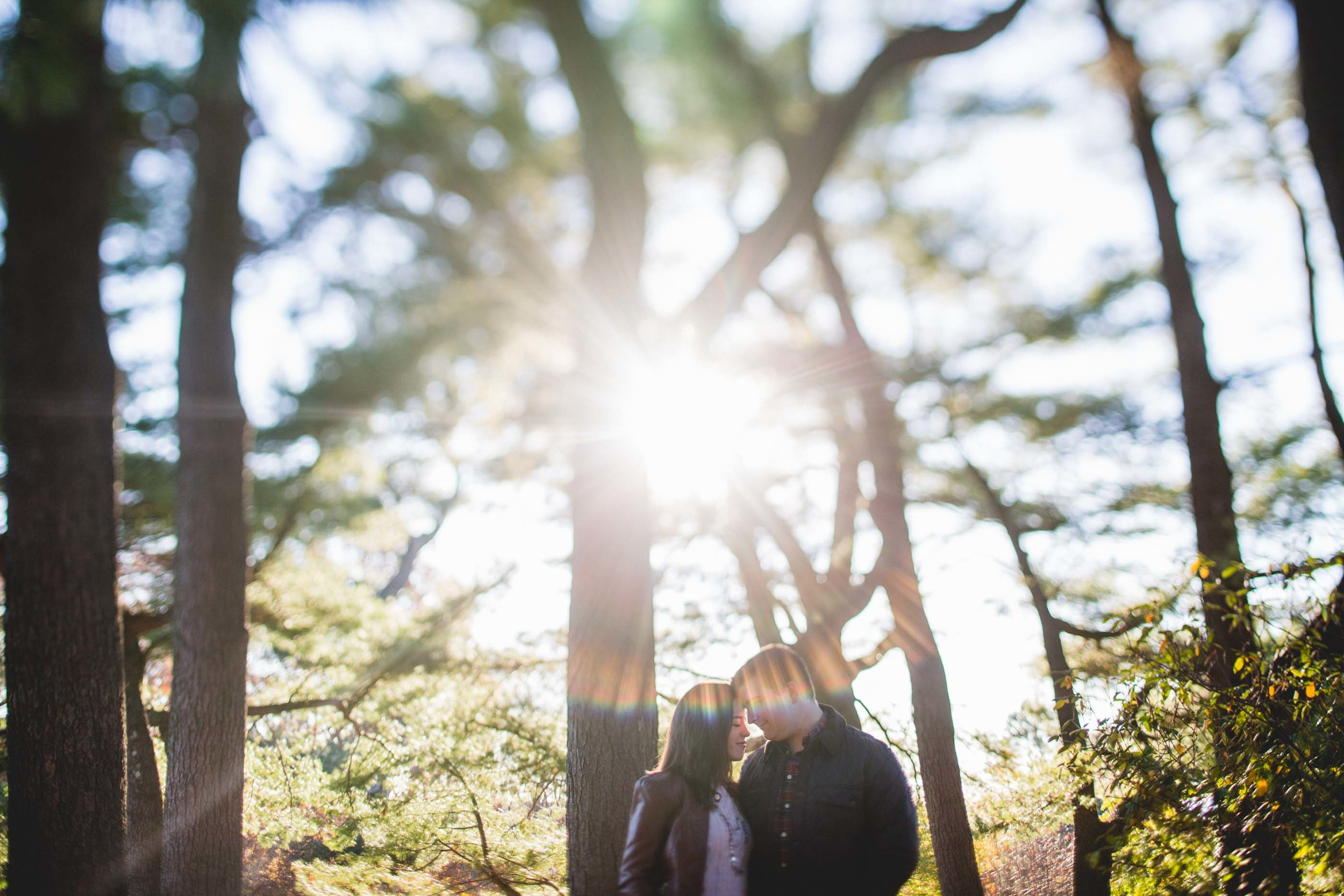 Arboretum-Engagement-Photographer-9.jpg