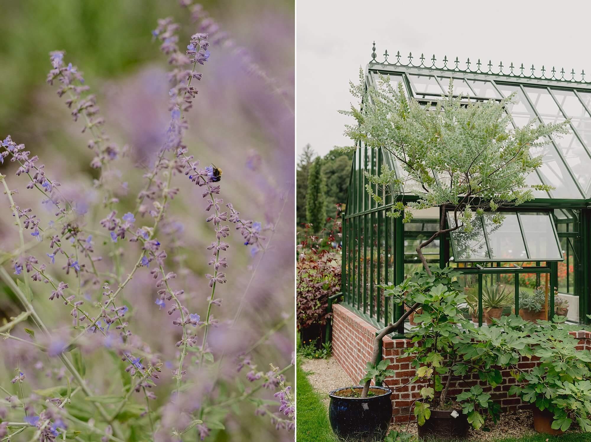 Gardens At Elm Bank Wedding-36.jpg