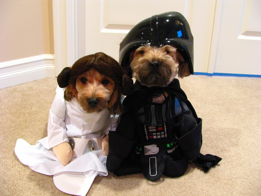 May the Force be with you two