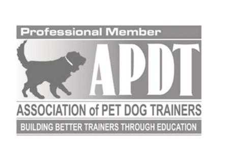 Dogzenergy Certification