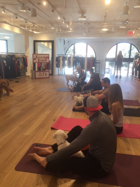 All of the yoga students listening to their fantastic instructor Marjorie Ness.