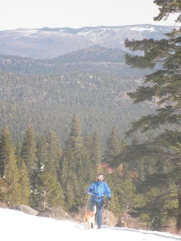 Tahoe Mammoth 3.jpeg