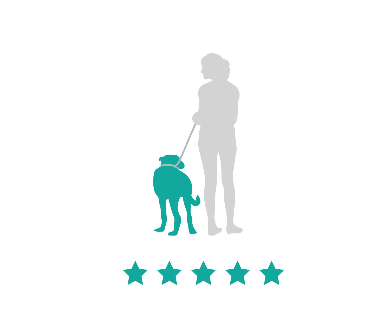 san diego professional dog walkers