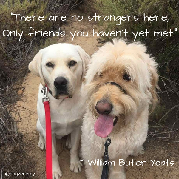 There are no strangers here; Only friends you haven't yet met. Read more at- http---www.brainyquote.com-quotes-topics-topic_friendship.html.jpg