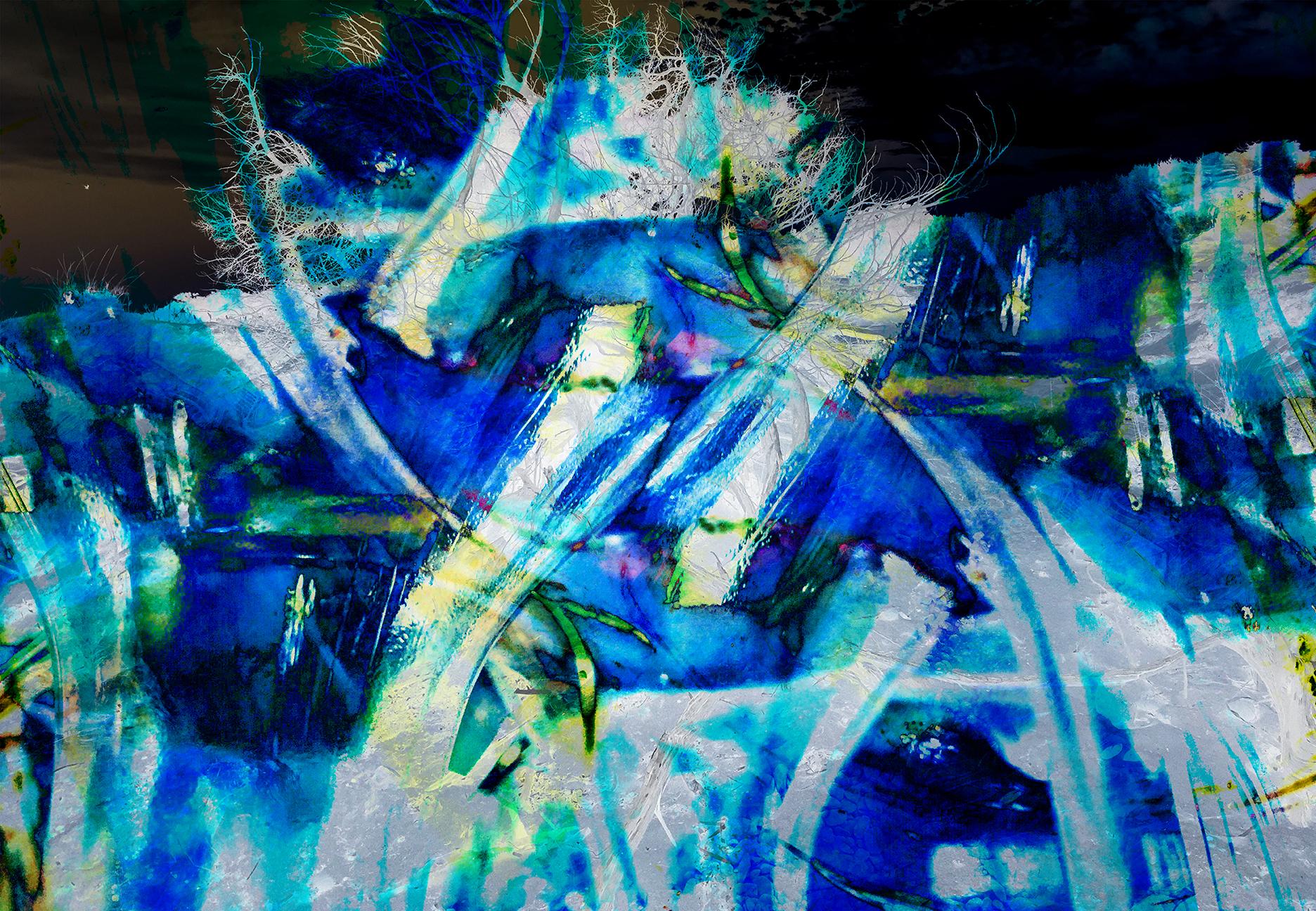 blue horse_ A2017-02-26 09-44-34.jpg