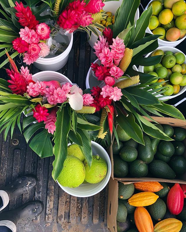 Loving all the colorful beautiful gifts the farm provides to supply our fruit + flower stand with 🤩🌈 if you're driving by please stop by and try! *located off of Hāna highway, across from Hana Farms 🌺🤙 . . . #tropicalflowers #tropicalfruits #citrus #avocados #ulu #cacao #tangelo #lemon #tahitianlime #kumquat #limequat #rubyredgrapefruit #farmstand #hana #maui #hawaii