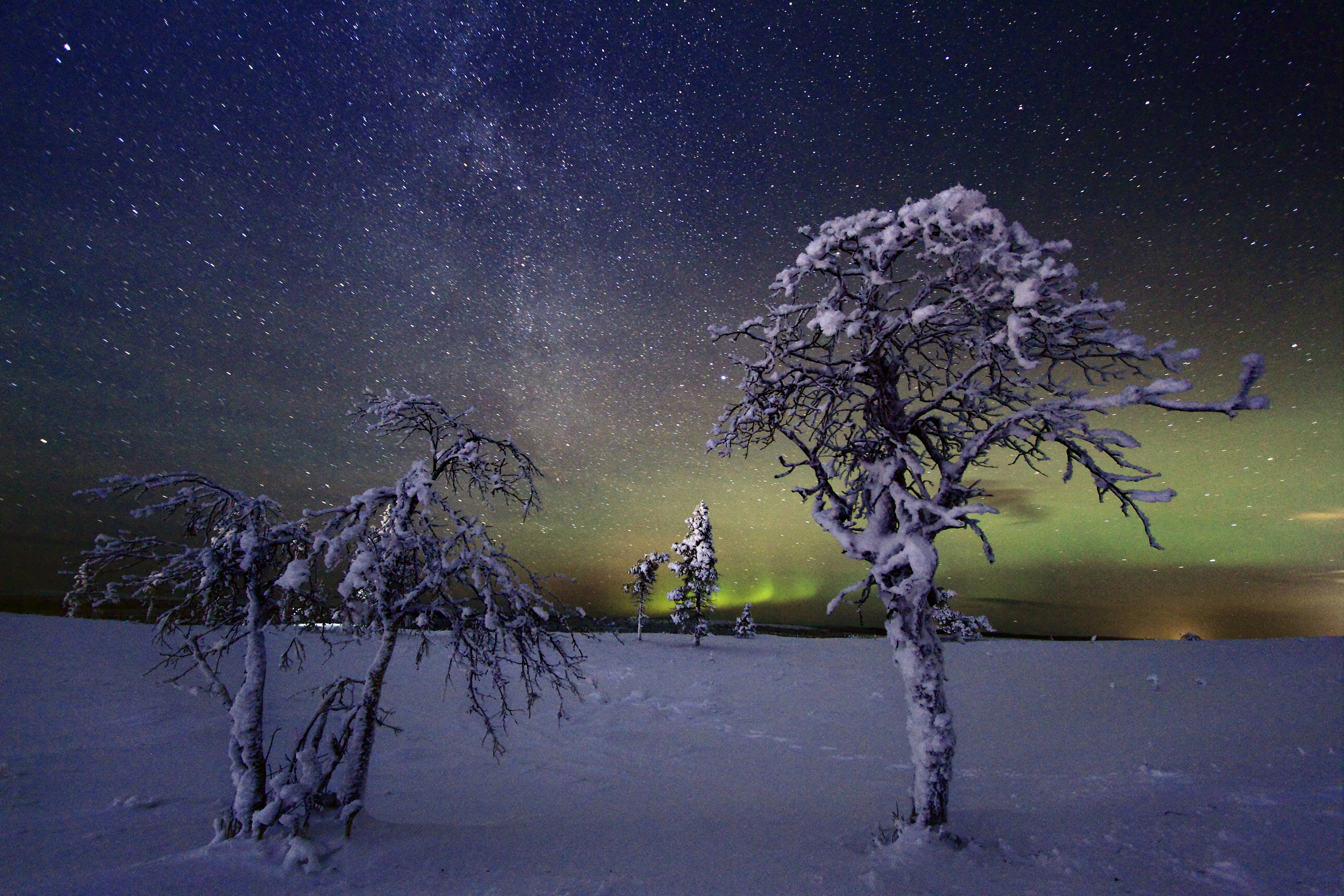 LPL_Northern_Lights_11 copy.jpg