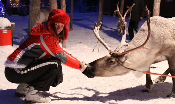 LPL_reindeer_feeding.jpg