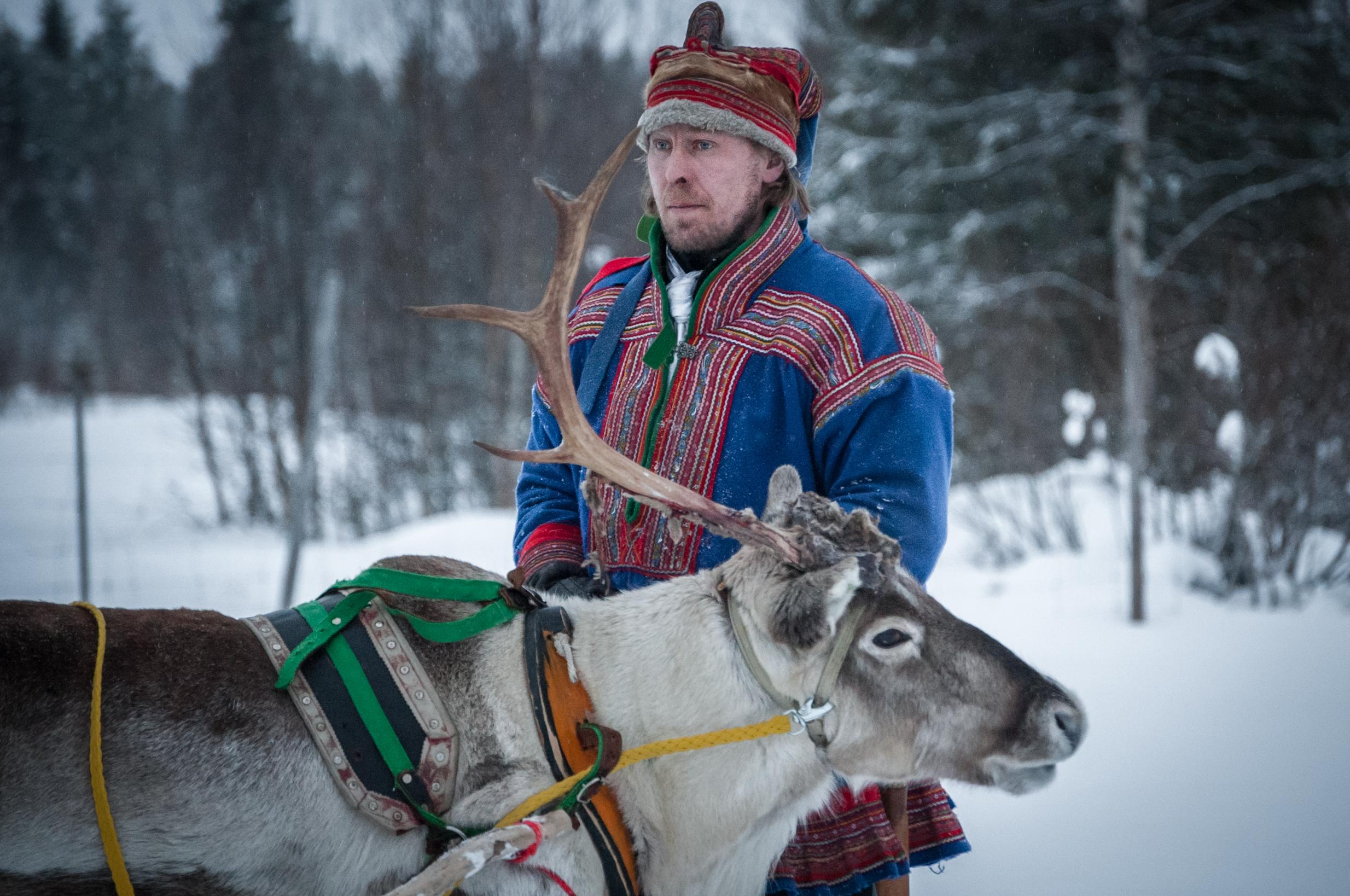 Lpl_reindeer_saami.jpg