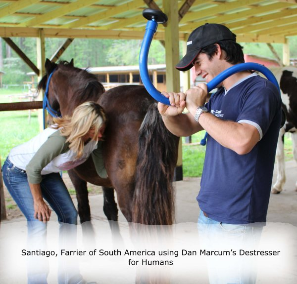 IMG_2921_edited__using_Dans_destresser_for_humans_by_Santiago__Farrier_of_South_America_copy_1.jpg